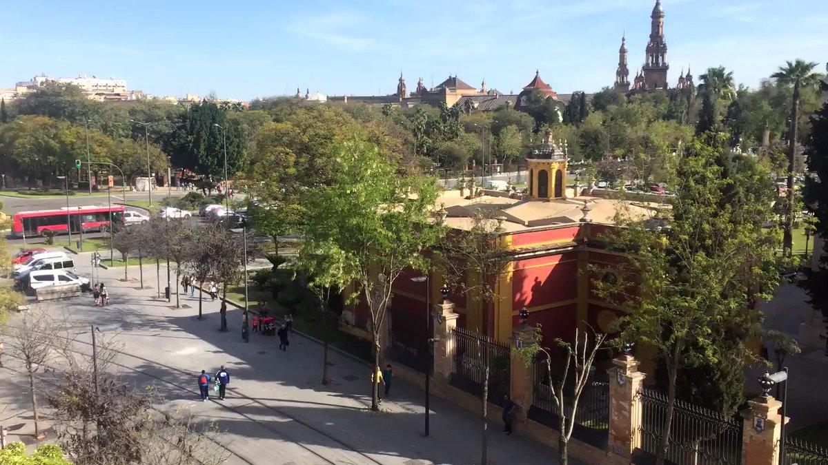 Buenos días #Andalucía. Hoy hace un día espléndido y hay que aprovecha...