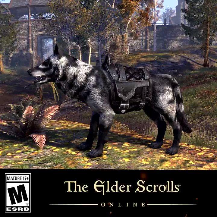 """The Elder Scrolls Online On Twitter: """"A True Lone Wolf"""