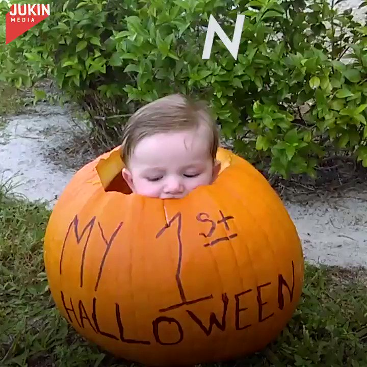 Someone is feeling the Halloween spirit. 😂🎃