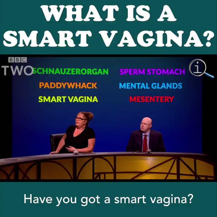 Have you got a smart vagina? 😸 #QI @SandiToksvig @RomeshRanga @RealMattLucas https://t.co/8hcrjXbmby