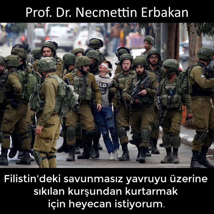 Filistin'deki savunmasız yavruyu üzerine...
