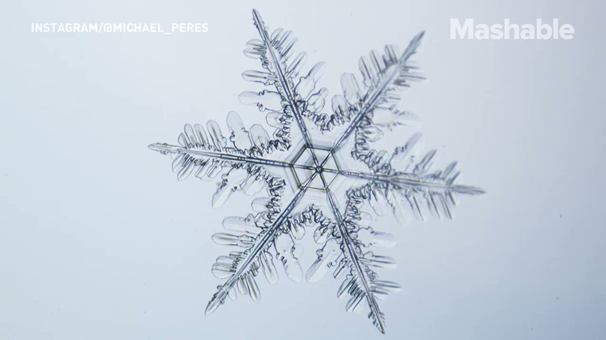 Capturing snowflakes under a microscope is as beautiful as it sounds