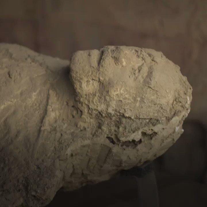 Per gli amanti della storia antica, oggi...