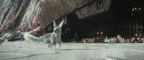 RT @StarWarsFR: Qui va suivre le vulptex au cinéma pour revoir #StarWars : #LesDerniersJedi ? https://t.co/NsBsRuZawN