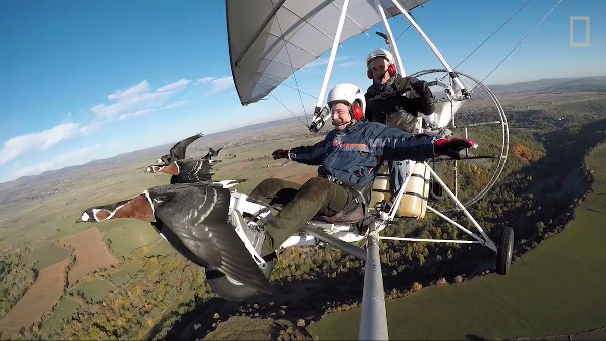 Did you ever wish you could fly? This man's been doing it for more than 20 years