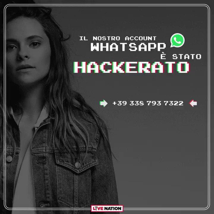 Buongiorno!🎮 Ho hackerato il profilo Whatsapp di @LiveNationIT per un gioco interessante. Ho la Playstation 1, quindi ho preparato una sfida su 3 livelli stile Spyro. Chi vince non diventa un drago ma volerà nel backstage del tour! SCRIVETEMI AL 3387937322 🔥 #FrancescaHack