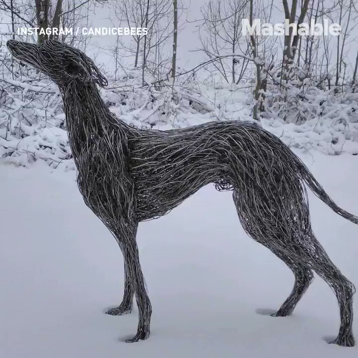 These metal animal sculptures are so realistic, you may need to do a double take