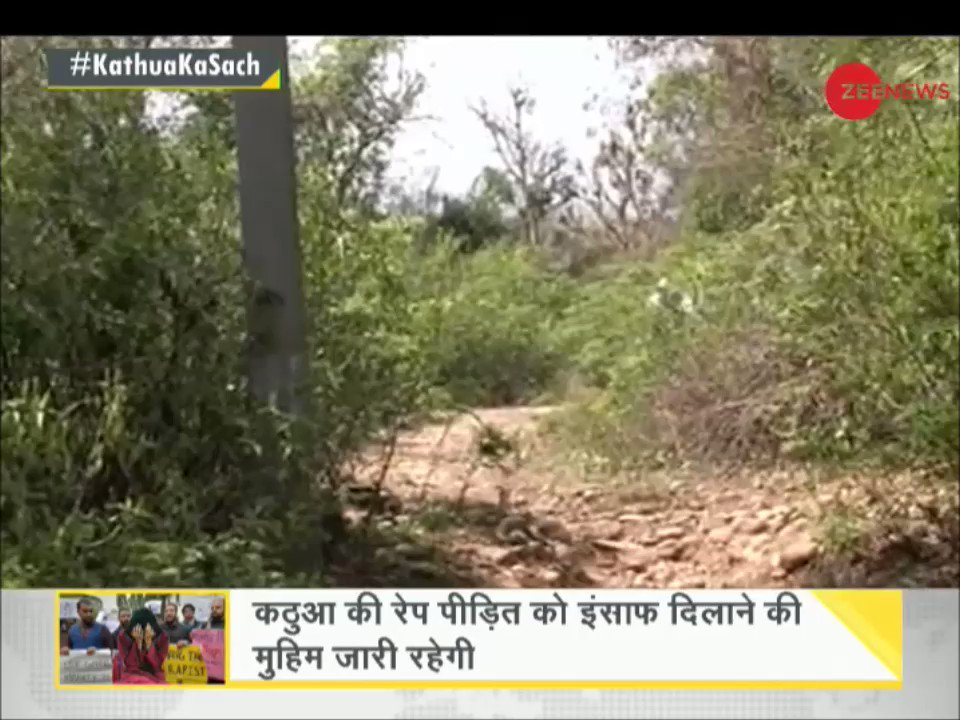 Zee News Hindi's photo on #KathuaKaSach