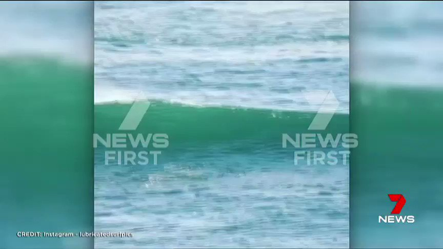 A stand up paddle boarder has had a surprise encounter with a dolphin in Western Australia. #Dolphin #7News