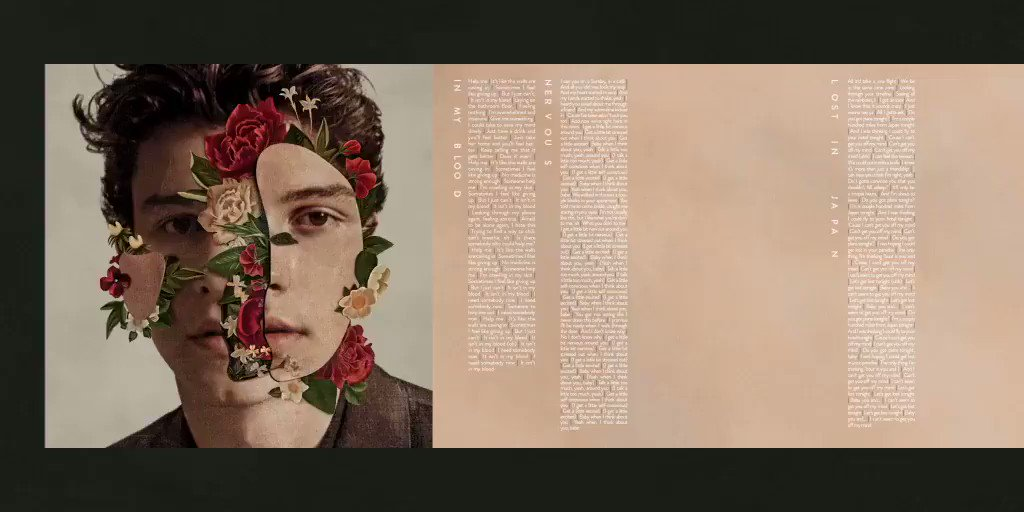 #ShawnMendesTheAlbum packaging & credits. Thank you x