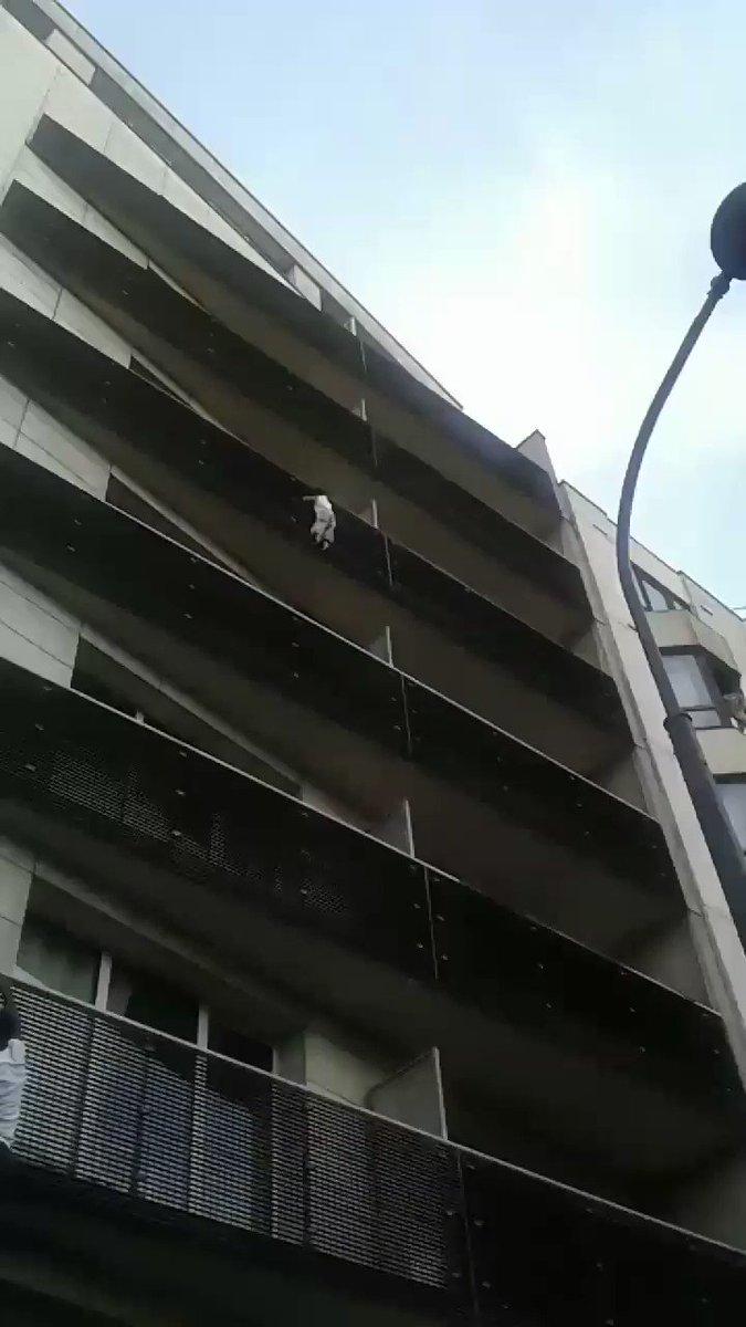 'Spider-Man' of Paris climbs four storeys to rescue dangling boy – Trending Stuff