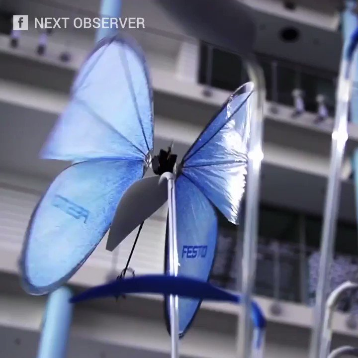 RT @Fisher85M: These amazing robots were inspired by animals! {Video}  #innovation #Robots #startups #tech https://t.co/SlbyyhkYg9
