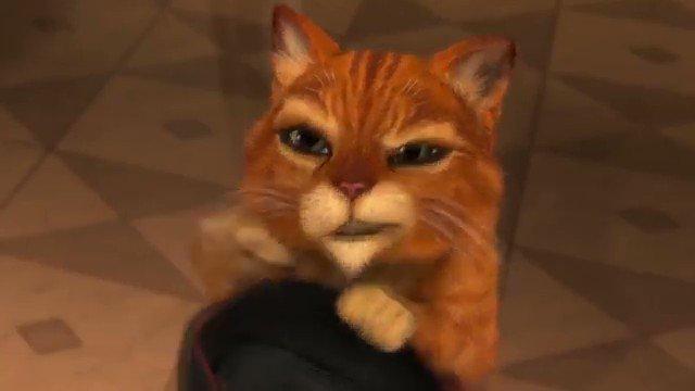 Гифка кот в сапогах просит