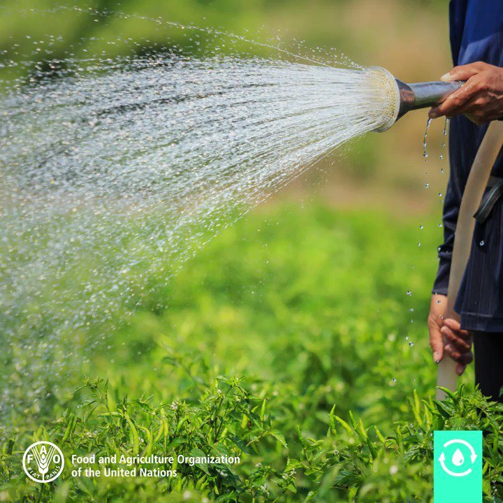 Without it we can't produce our food. We need to respect this precious resource. #water #ZeroHunger