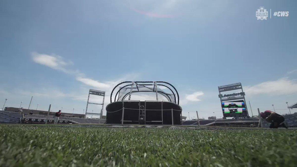 NCAA Baseball's photo on Baseball