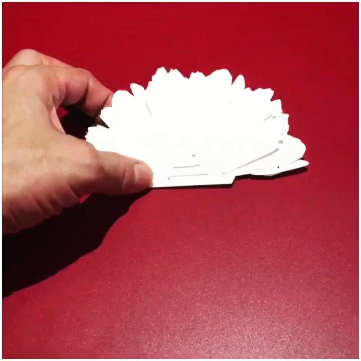 江古田の環さんで扱っている人様の芍薬の花ポップアップカード。平らな餃子みたいなカタチからパタンと満開になるのだ。面白くてパタンパタンしてきたw
