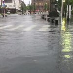 雨による影響で道路冠水!佐嘉神社の鯉が道路を泳ぐ姿が発見される!