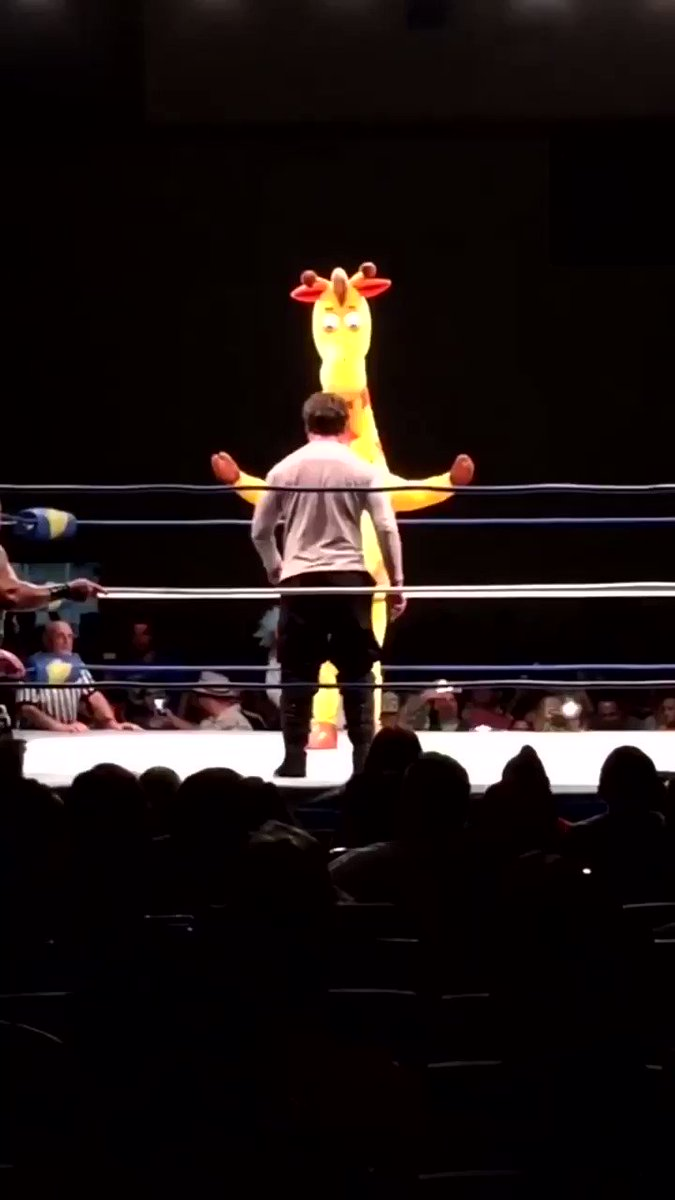RT @Fardeen12O: Geoffrey the Toys R Us giraffe enters a rumble and gets eliminated by Amazon package https://t.co/lYpUww3GEX
