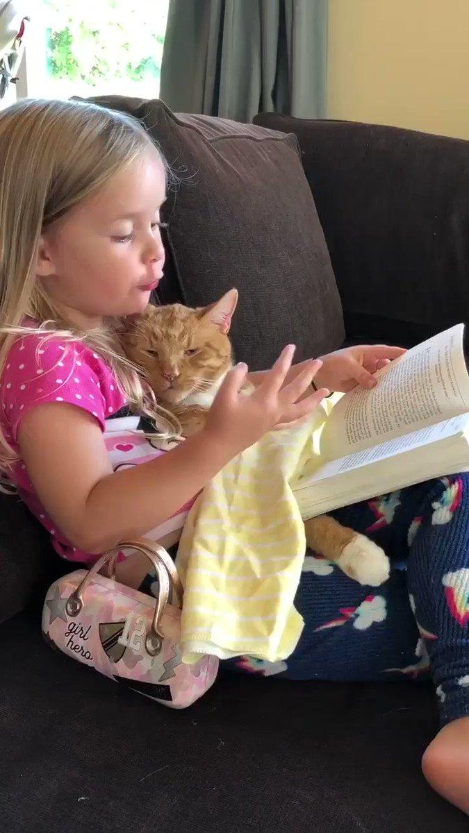 Little Girl Reads Cat Bedtime Stories