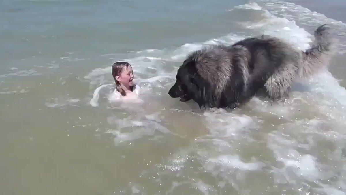女の子が溺れてるのかと勘違いして助ける優しい紳士さん