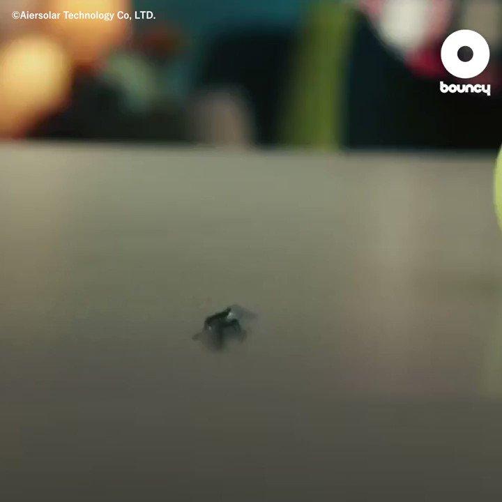 今日は #蚊の日 🌀USB式電動蚊取り器で蚊を撃退しよう✊