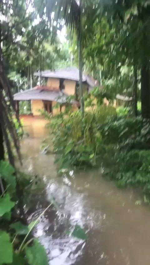 M.Unnikrishnan's photo on #KeralaFloods