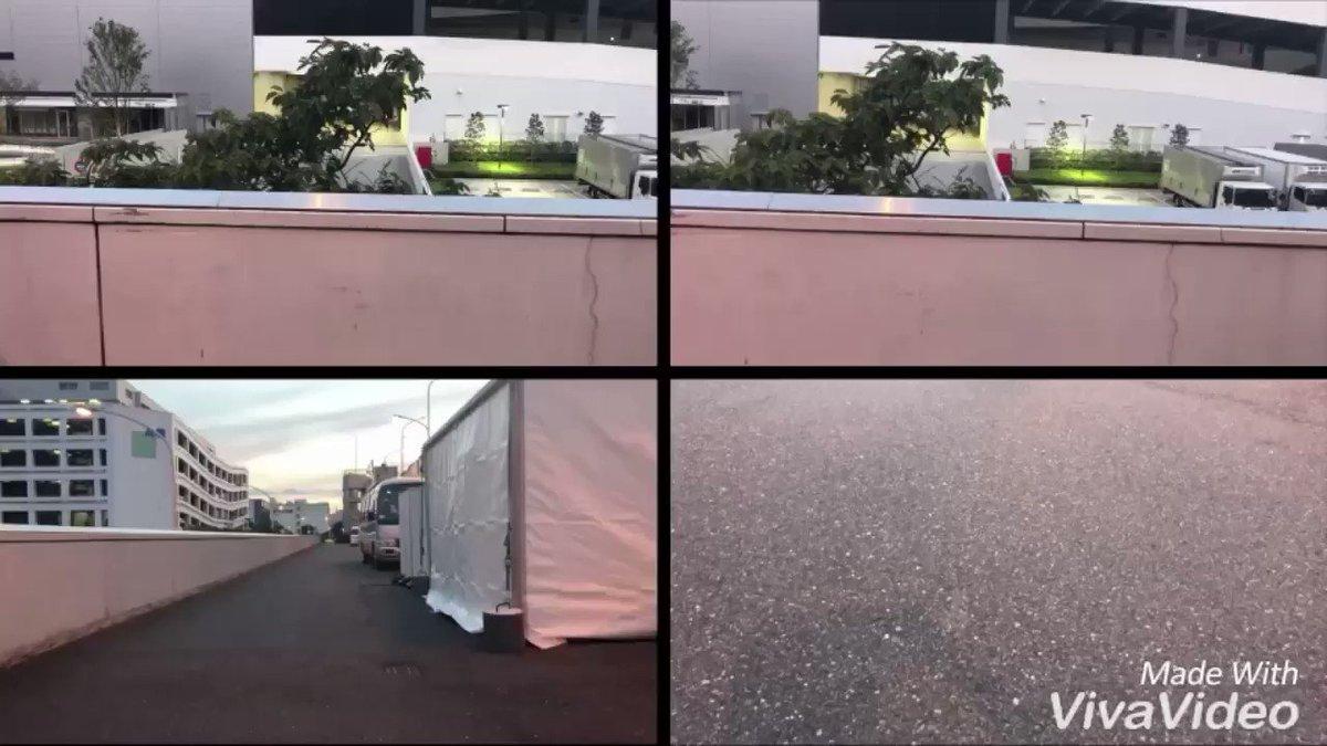 坂本愛玲菜さんの動画キャプチャー