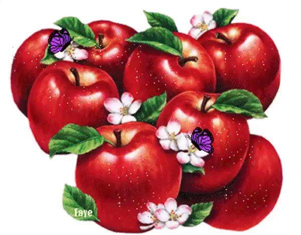 Анимация с яблоками, давай помиримся