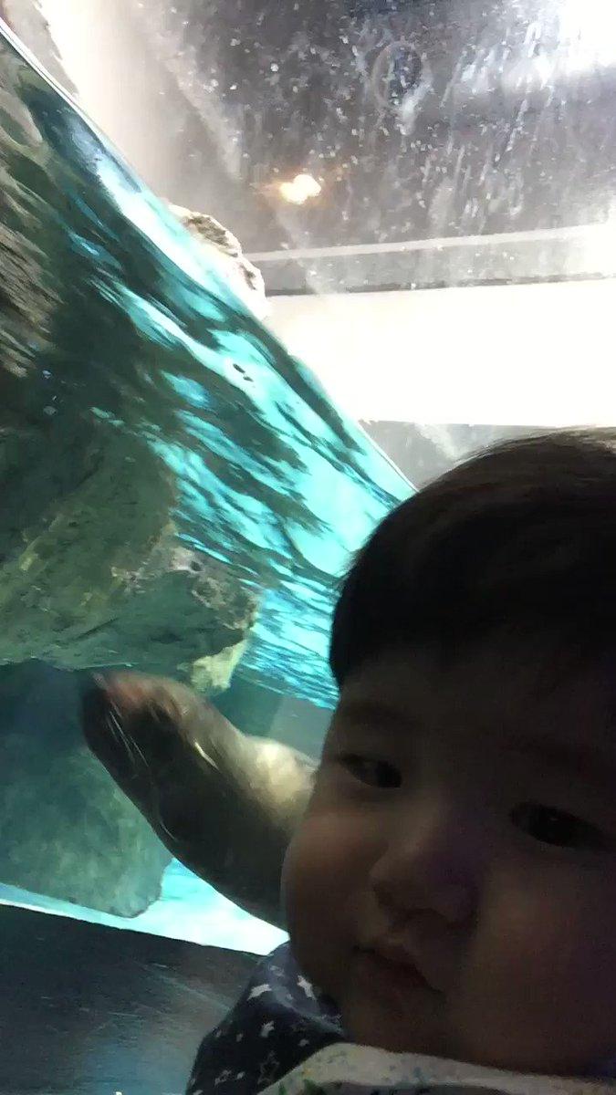 直江雨続さんの動画キャプチャー