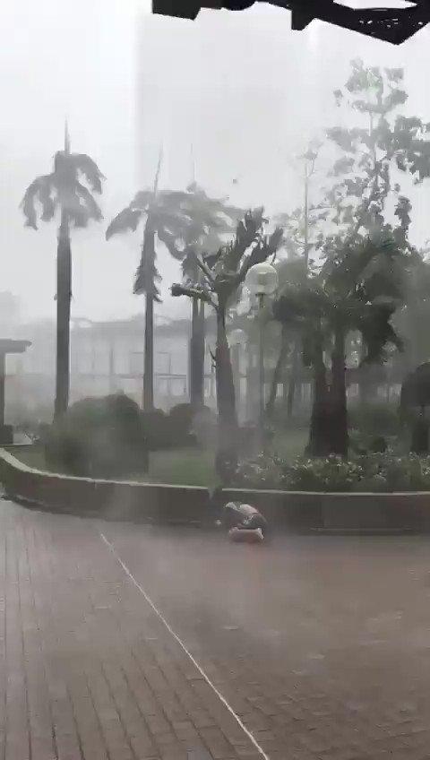 Les rafales de vent sur les collines de #HongKong dépassent parfois 200 km/h. Elles atteignent 170 à 200 km/h sur les îles et 150 à 160 km/h à laéroport. #Mangkhut