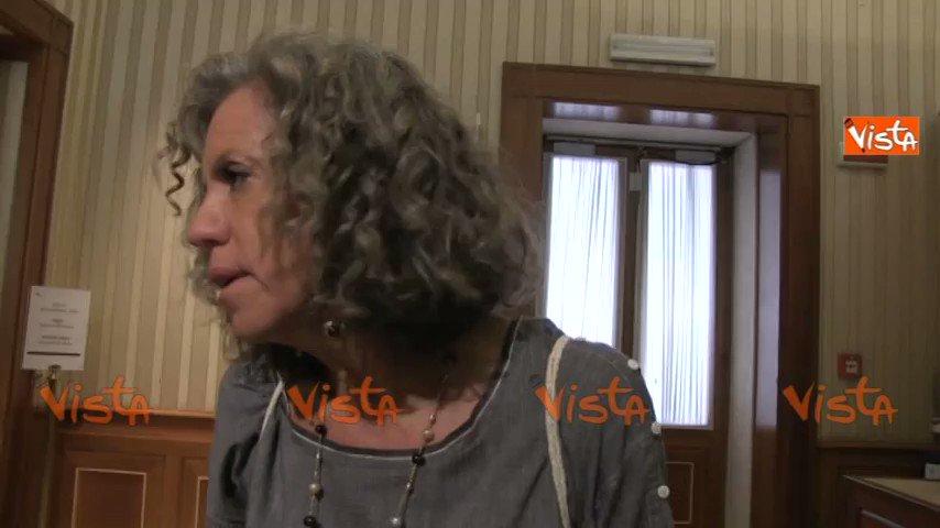 """#AffidoCondiviso, @MonicaCirinna: """"Faremo #battaglia a legge #Pillon""""  - Ukustom"""