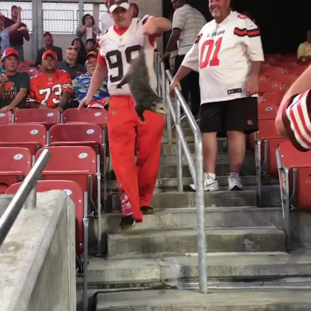 Nbd, just a Browns fan catching a possum tonight at the stadium