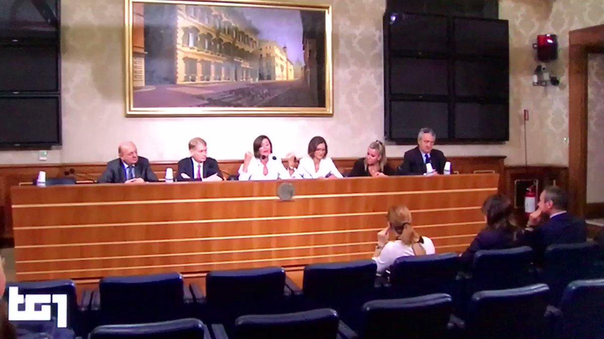 La mia dichiarazione al #Tg1 sulla #manovra e su questo #governo illegittimo, con un programma non legittimato dal popolo sovrano. @forza_italia @GruppoFICamera  - Ukustom