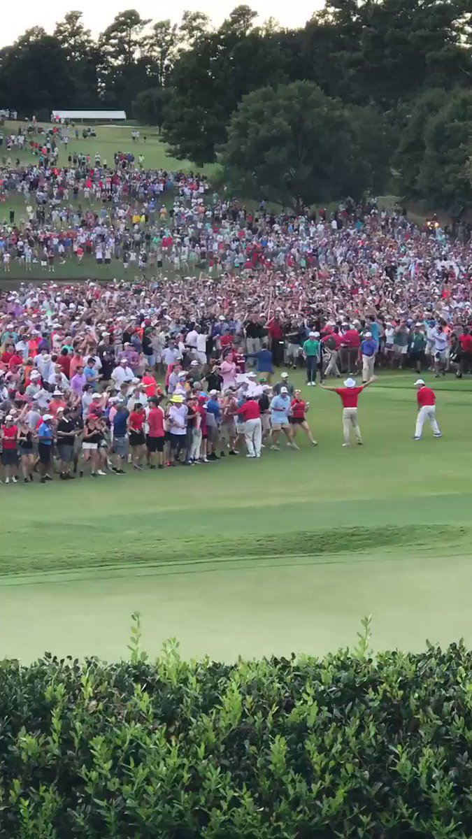 I've never seen anything like this! #TigerWoods