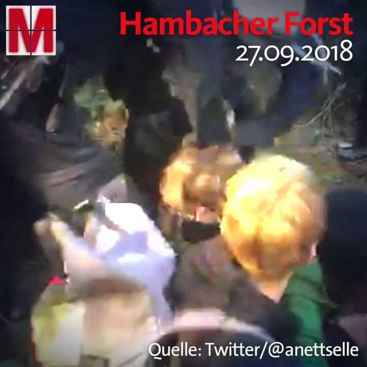 Polizeieinsatz #HambacherForst, 27.09.2018. Ohne Kommentar.