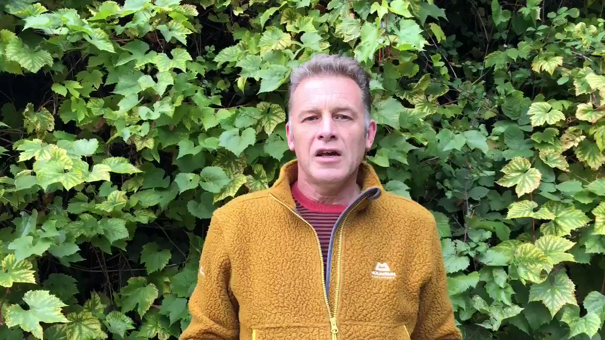 So what has been the reaction to #ThePeoplesManifestoForWildlife and #PeoplesWalkforWildlife from our current decision makers ? Nothing from @michaelgove . . . but @SueHayman1 is keen to schedule a meeting . Hopefully more to come ?