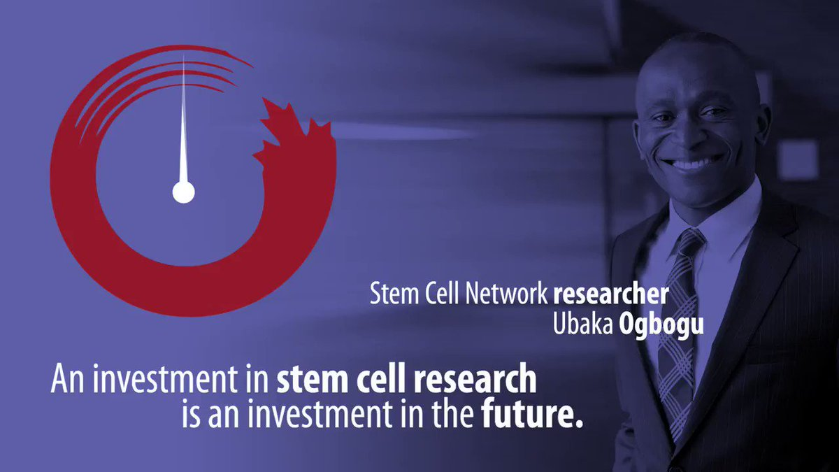 Image for the Tweet beginning: Show your support for stem