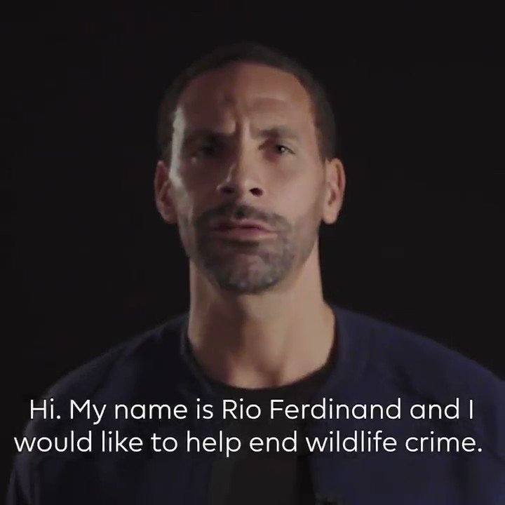 HUGE thanks to @Rioferdy5, @AlanShearer, @TheoWalcott, @VictorWanyama, @MayaYoshida3, @Okazakiofficial, @AaronRamsey & @edersonmoraes93 for supporting the International Wildlife Trade Conference with a message to fans on why threatened animals must be protected. #EndWildlifeCrime