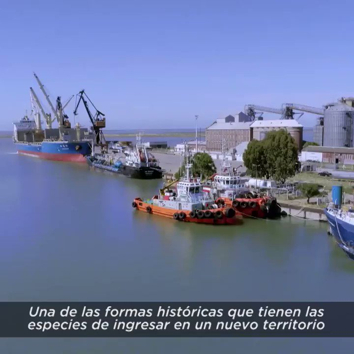 Prefectura Naval Arg's photo on Casco