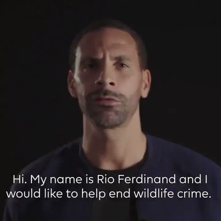 HUGE thanks to @Rioferdy5, @AlanShearer, @TheoWalcott, @VictorWanyama, @MayaYoshida3, @Okazakiofficial, @AaronRamsey & @edersonmoraes93 for supporting the battle to #EndWildlifeCrime with an important message to fans on why threatened #animals must be protected. #AnimalRights 🐾