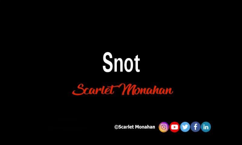 Snot. #poetry #poet #writer #art #poetrycommunity #poetrywriter #ScarletMonahan #love #words #snot   5