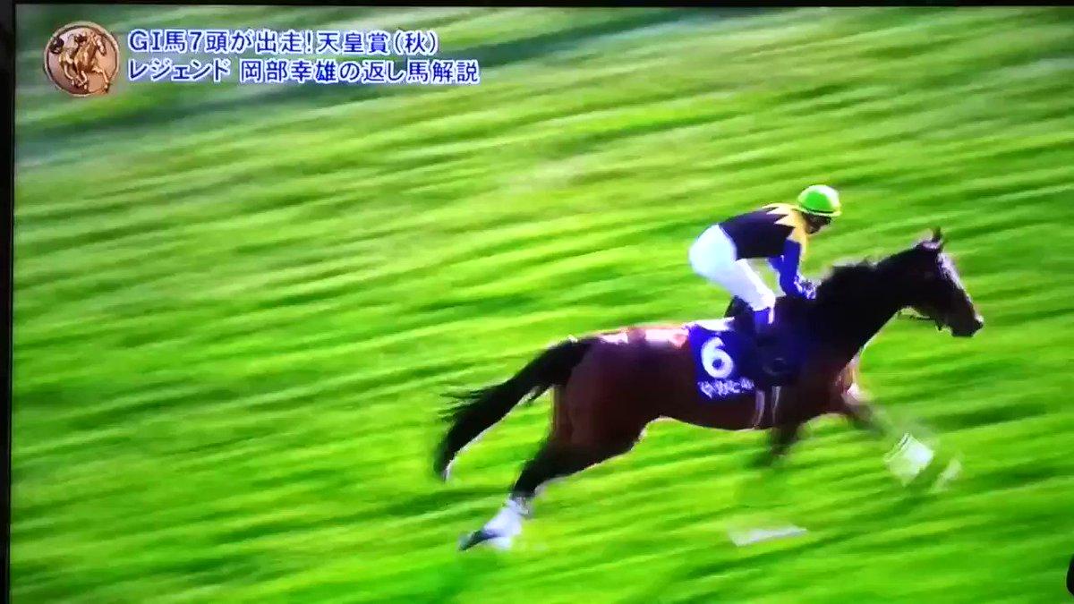 競馬動画: 2018天皇賞秋 レイデオロがダービー以来のGI2勝目を上げました。 https://t.co/YYVsfDBuRq …