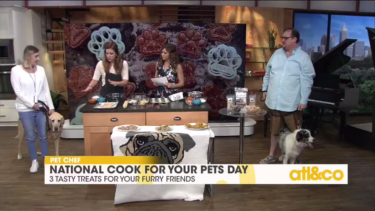 Dog owners! Try these quick and easy #recipes for your furry friends: https://t.co/FCsB7q3QbA  #CookForYourPetsDay https://t.co/NNNtGKFdgT