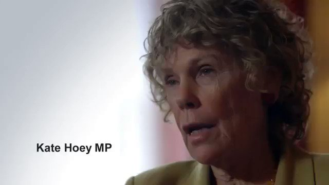 Kate Hoey and David Davis admitted before the referendum that they didn't understand how the EU works.