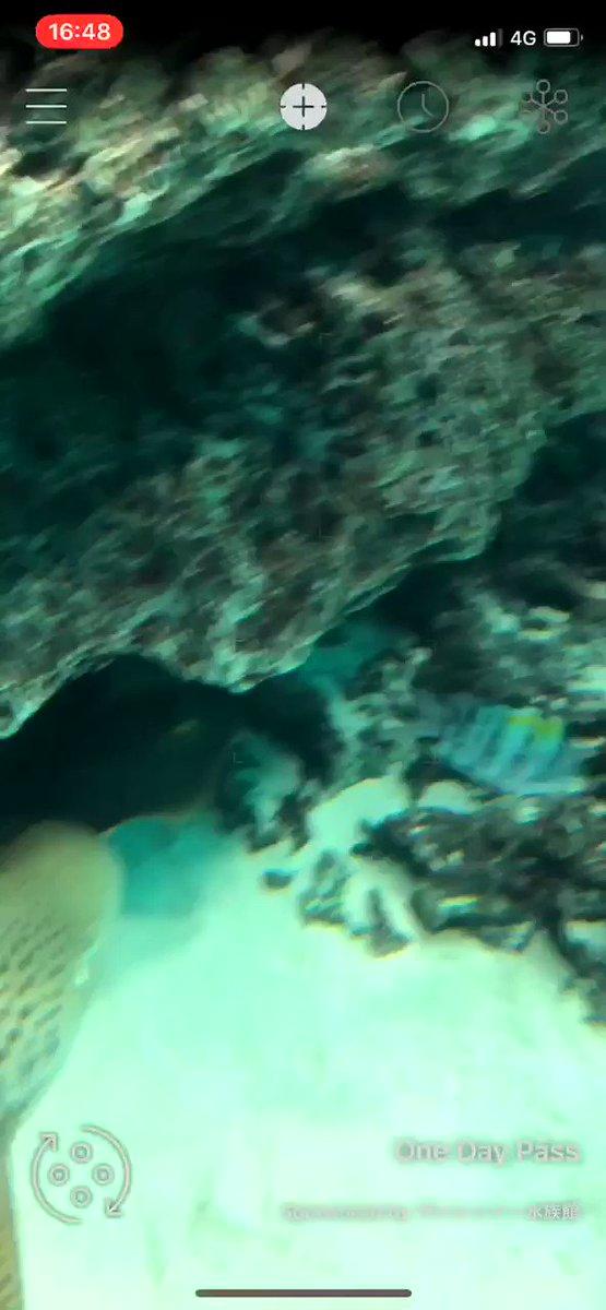RT @noshipu: LINNE LENSって生き物の名前がでるアプリ、水族館で使うとすごい楽しい https://t.co/HnCF6LdbNs