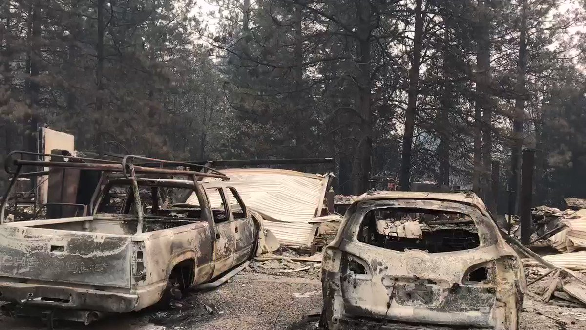 PM Breaking News's photo on #CampFire