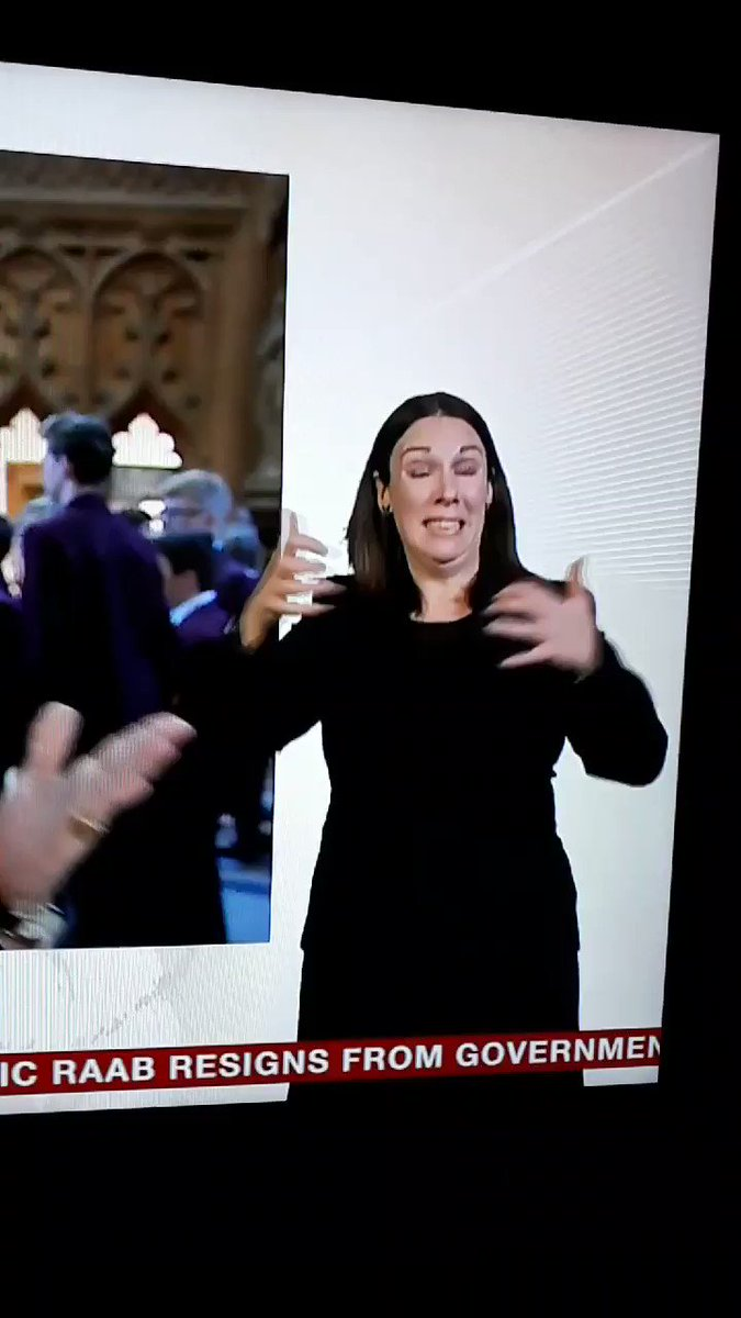 The sign language interpreter doing the Brexit Agreement on BBC News is perfectly conveying the perplexing fuckery of this situation #Brexit #BrexitChaos