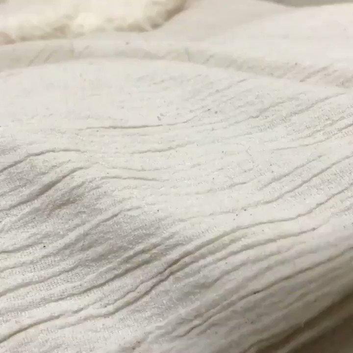 毛布の中にはかわいいがたくさん!猫のかわいい寝顔で癒されたい方絶対見て!