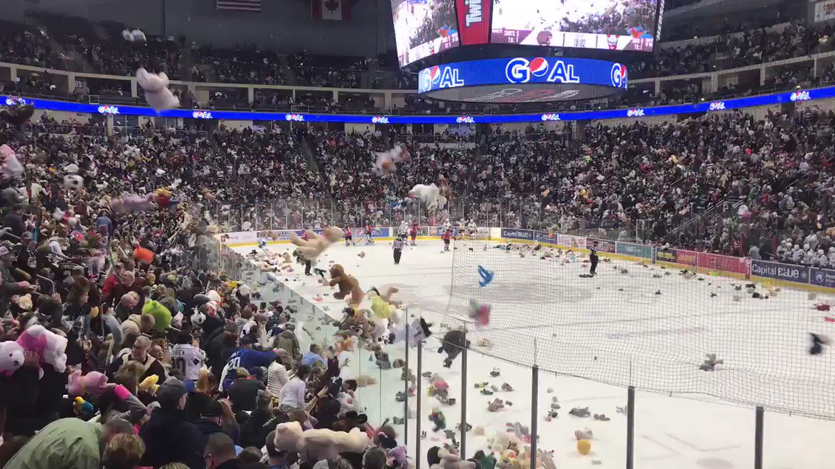 Fans Threw Almost 35,000 Stuffed Animals During A Live Hockey Game, And It Was The Icing On The Cake