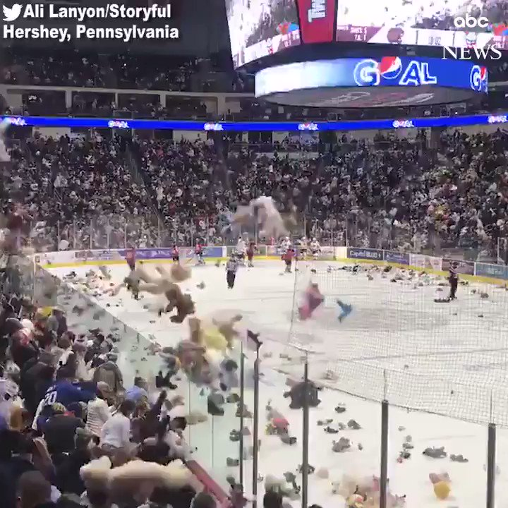 More than 34,000 teddy bears were tossed onto the ice after the Hershey Bears won a hockey game against Binghamton. Fans who threw the bears—that will be donated to charity—helped the team break a world record, surpassing the previous one of 28,000 bears. https://abcn.ws/2RzLJK5